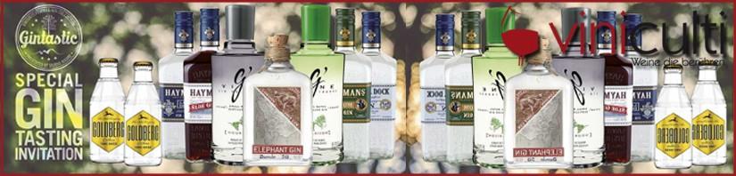 Gin – Tasting  bei viniculti